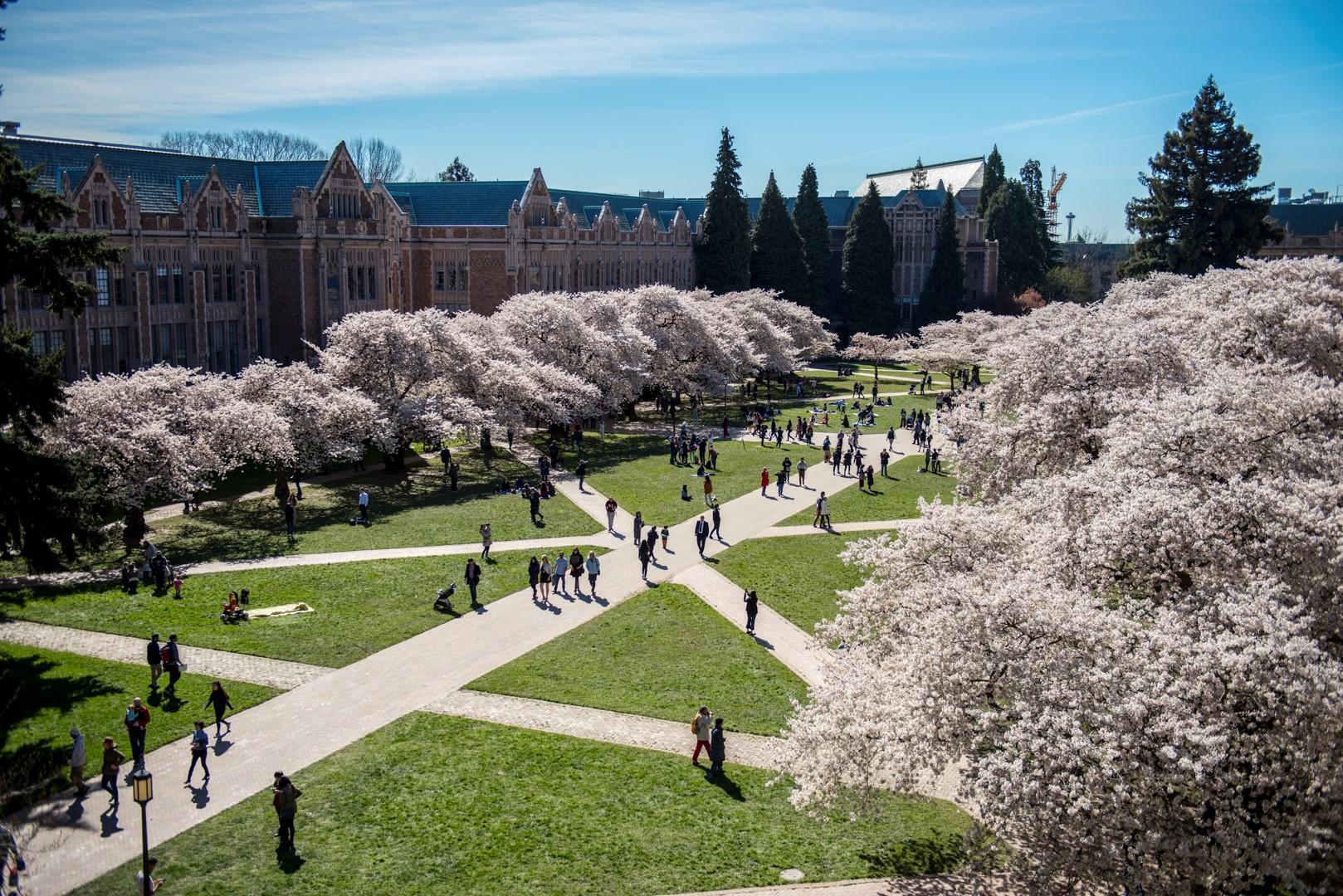 UW Campus IslandWood's partner in the Graduate Program in Environmental Education & Equity