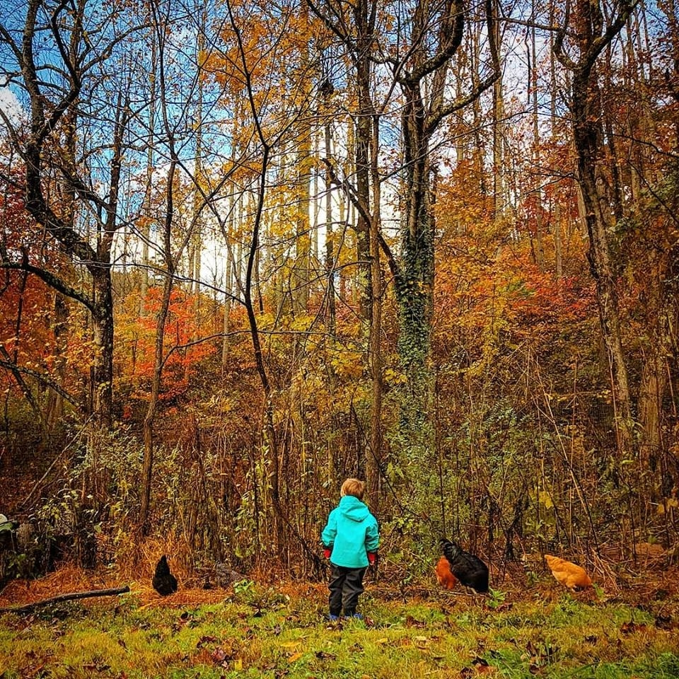 One of Lauren Brown's students stands in front of autumn trees.