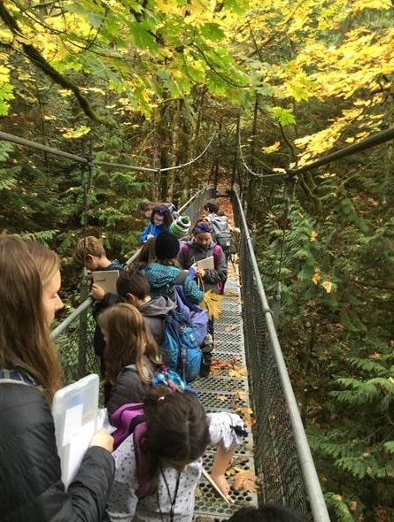 School Overnight Program students investigate falling leaves on the Suspension Bridge.