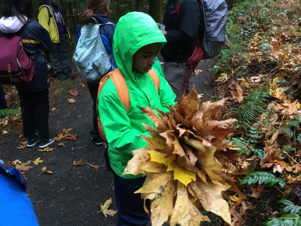 A School Overnight Program student holds maple leaves.
