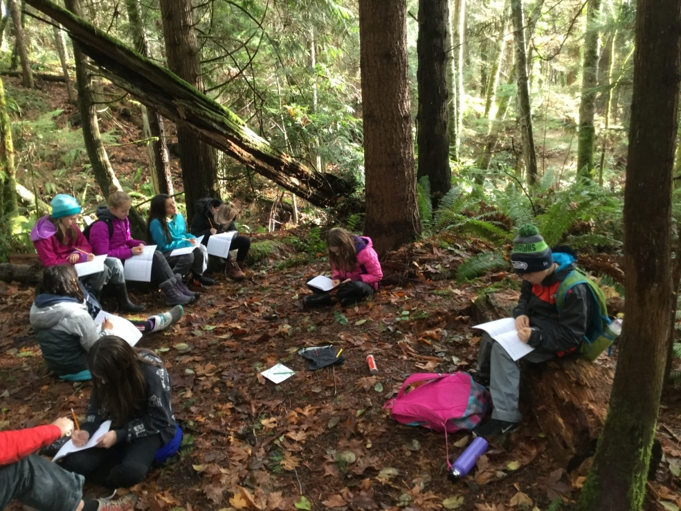 School Overnight Program students sit in a circle in the woods, observing their surroundings and recording their findings.