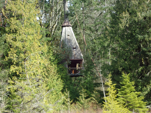 An image of the Bog Treehouse.
