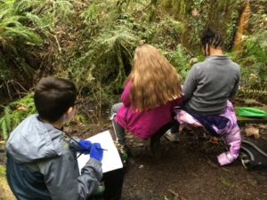 School Overnight Program students recording observations in the forest.