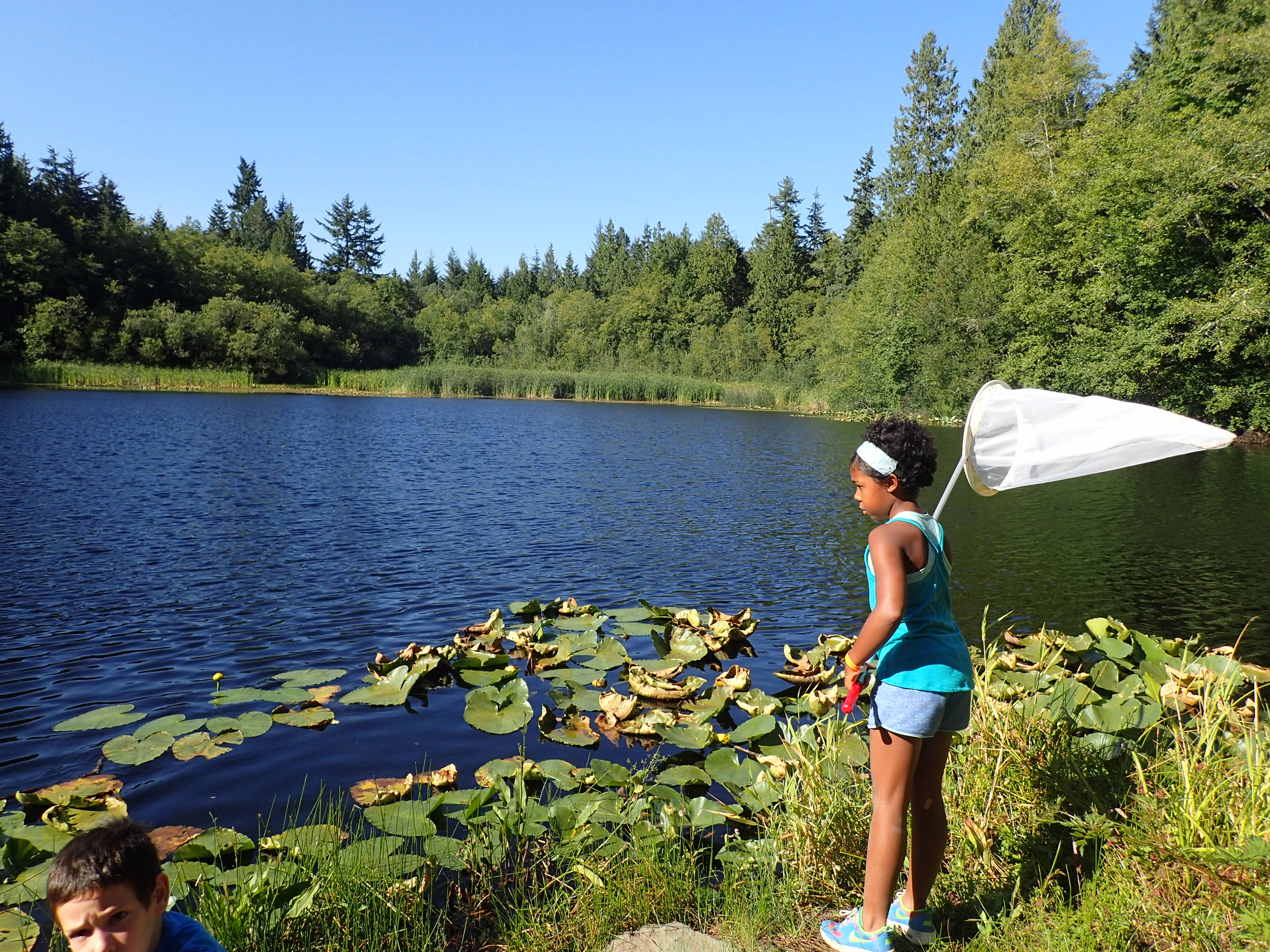 Children explore Mac's Pond on IslandWood's Bainbridge Island campus.
