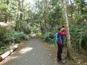 A child explores the forest at IslandWood's Bainbridge Island campus.