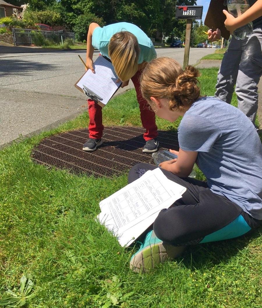 Students investigate a storm drain.