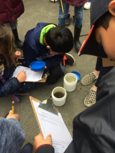 Students compare the turbidity of two water samples.