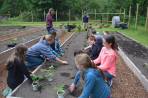 Nancyrose gardening with campers at Sound View.