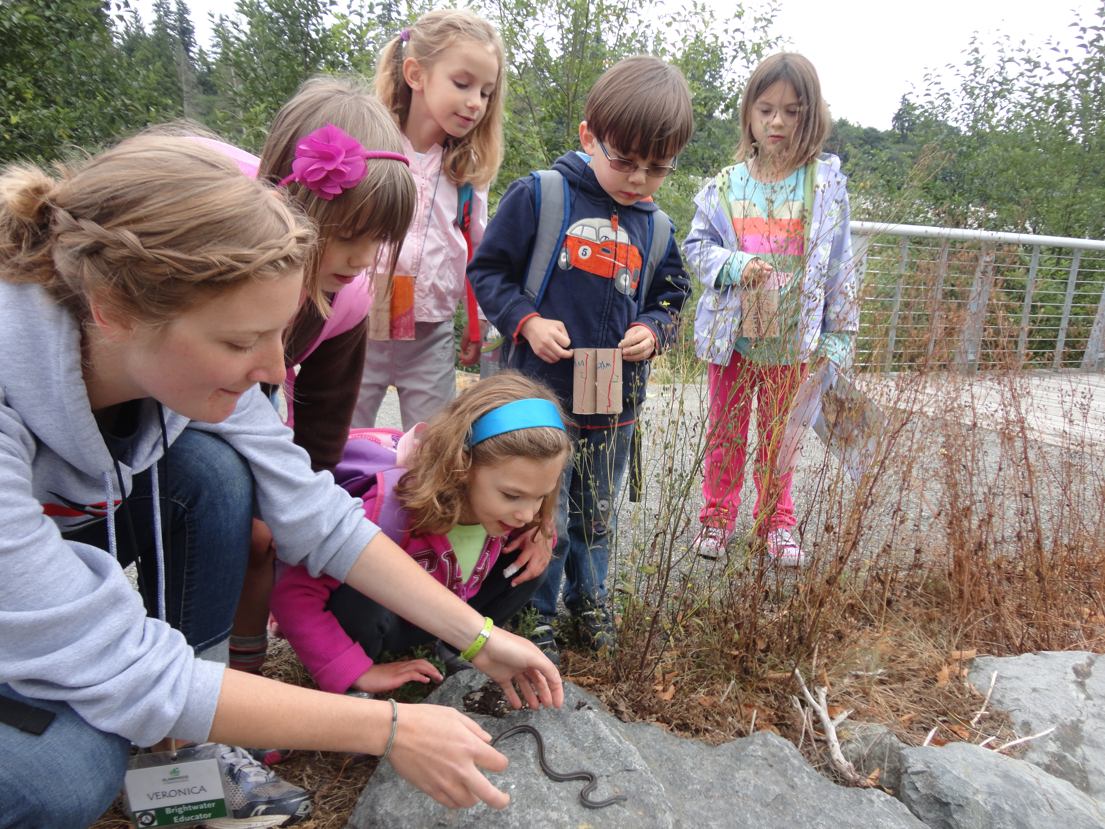Children with their instructor looking at a small snake during a Brightwater summer camp.