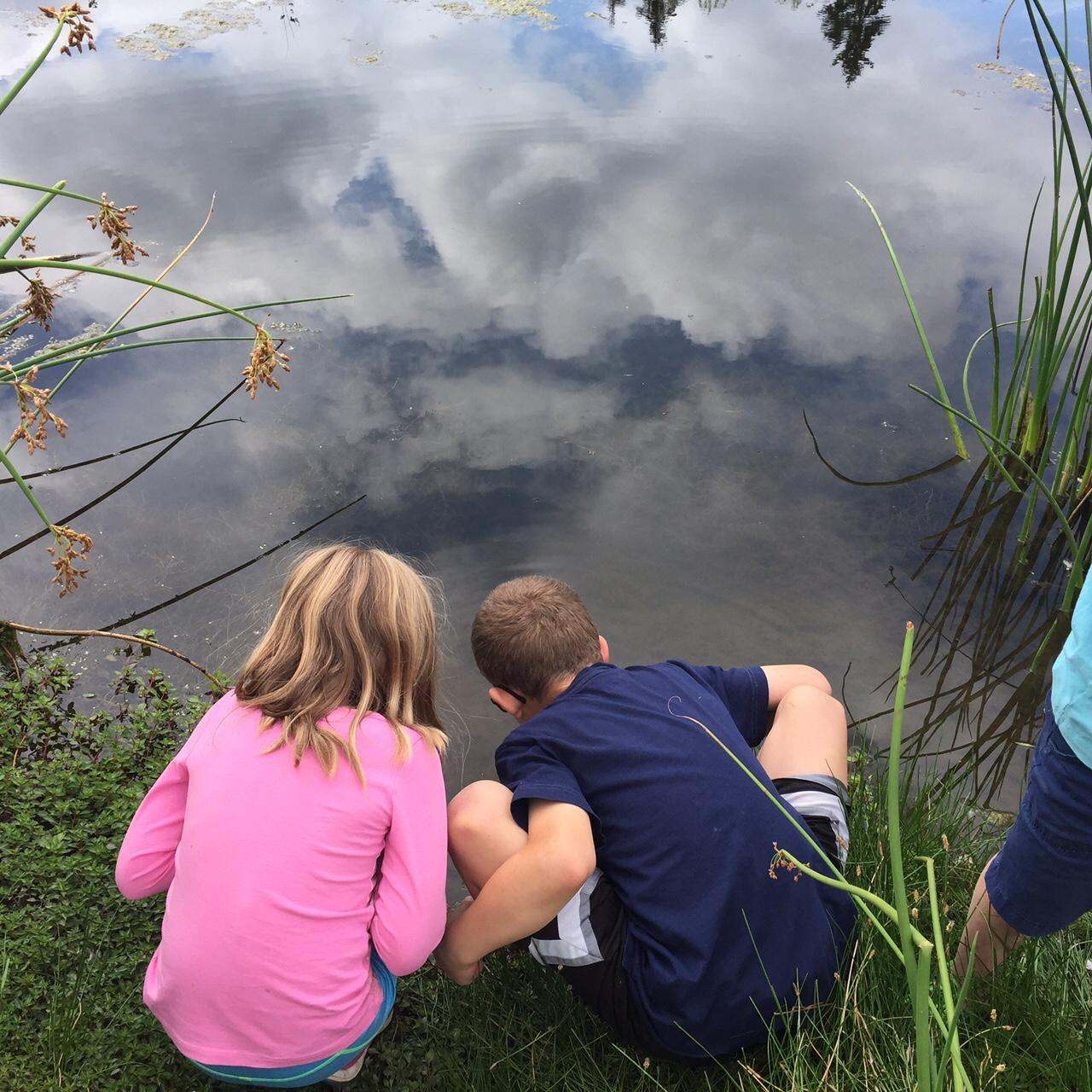 Two children examine a pond at Brightwater Education Center.