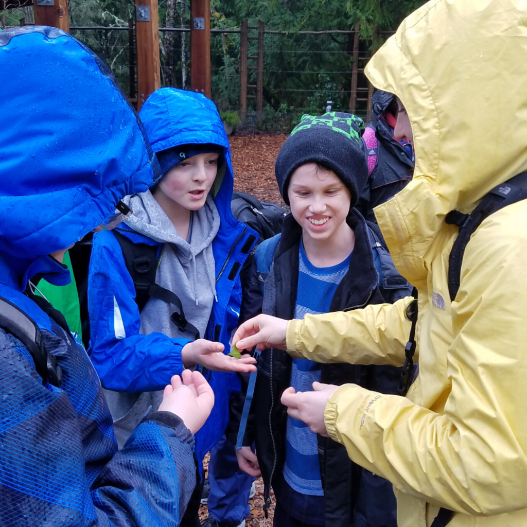 [Image description: IslandWood graduate student and School Overnight Program instructor Taylor O'Connor places a leaf into the hand of a student from the Washington State School for the Blind. Two other students stand next to them.]