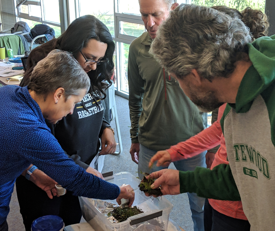 A group of teachers collaborate on creating a stormwater model during an Environmental Education Professional Development session with IslandWood