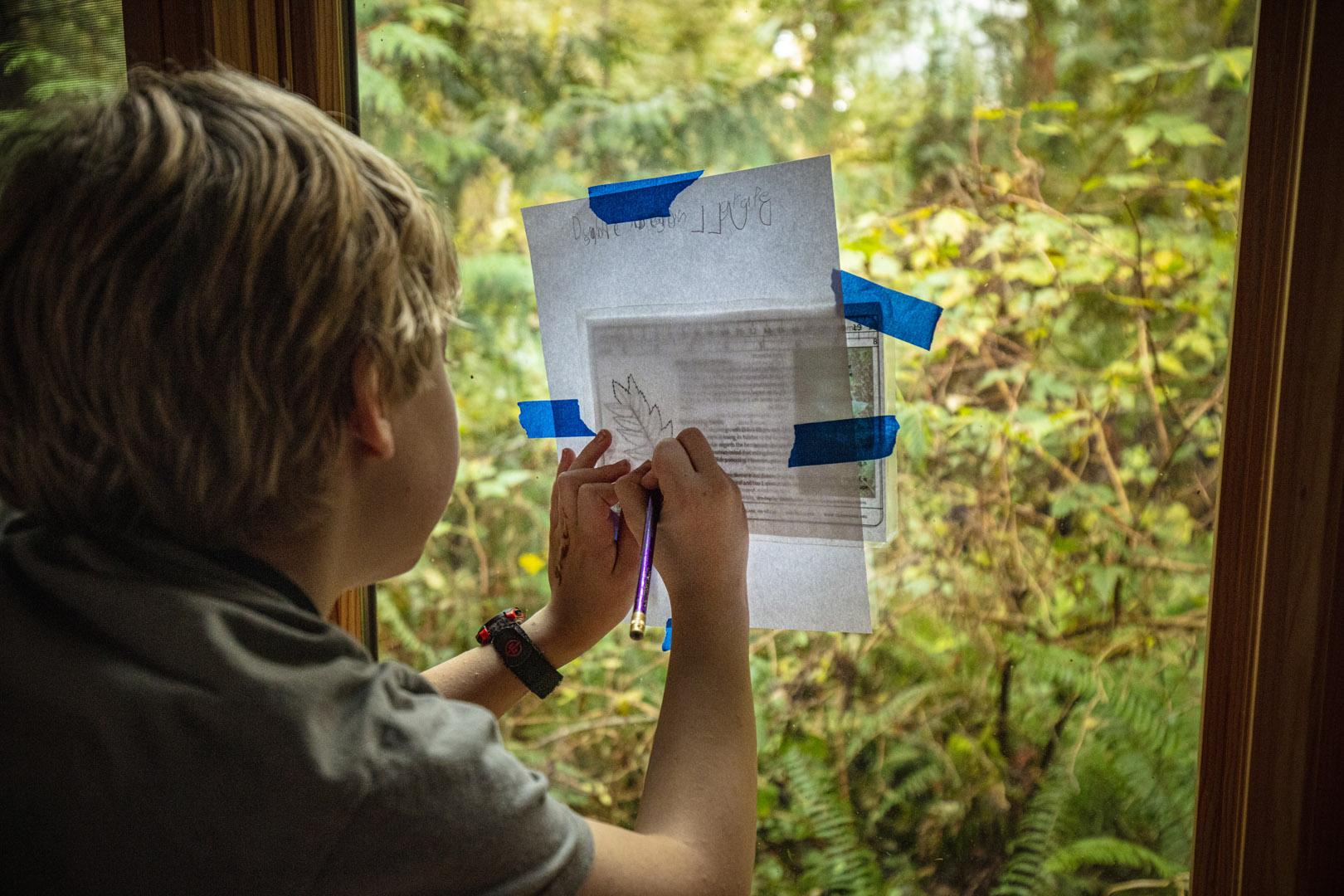Environmental Science Education at IslandWood